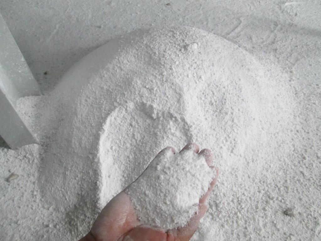 Cơ hội xuất khẩu 5 container 20ft bột đá vôi sang Ấn Độ