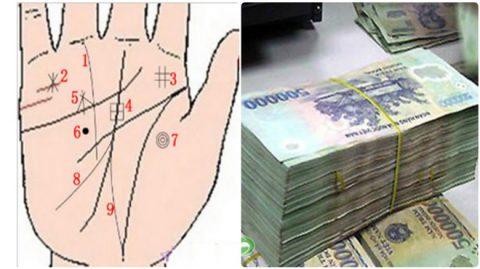 9 đường vân tay nhiều tiền lắm của, báo hiệu người sở hiệu sẽ có vận mệnh tươi sáng, phú quý đuổi theo ầm ầm