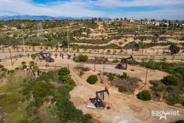 Giá dầu xuống mức âm: Khi thế giới không còn chỗ chứa - 2