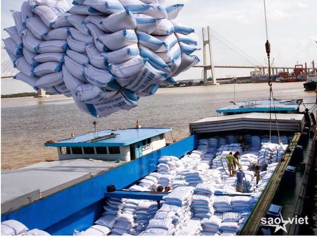 """Thủ tướng ra """"tối hậu thư"""" về xuất khẩu gạo - 1"""